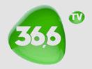 366 tv ua
